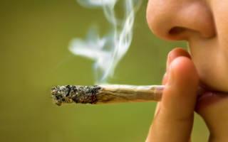Сколько держится марихуана в крови