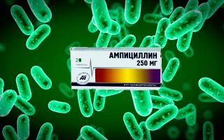 Ампициллин и алкоголь