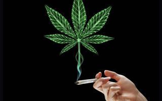 Как бросить курить гашиш